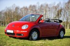 VW New Beetle Cabrio - 1600 zl.